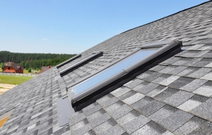 7 common roof problems
