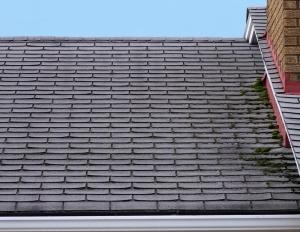 roof repair in saskatchewan